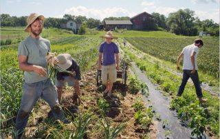 Γεωργών Πίνακες Αγροτών δικαιώματα συνεταιρισμών