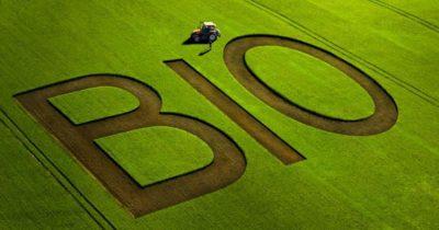 Αγροπεριβαλλοντικα Μέτρου Παραστατικά βιολογικής γεωργίας δόση Καλλιέργειες Βιολογική