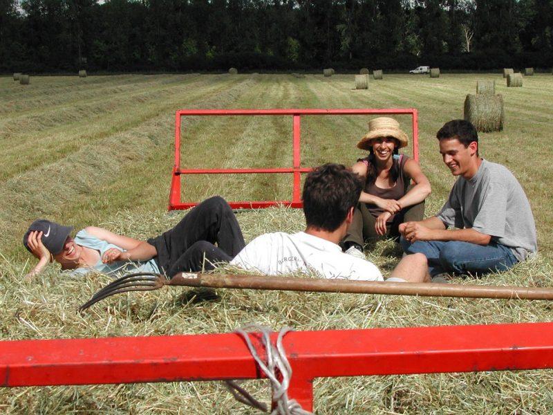 Νέοι παράταση πείραμα επιλαχόντες αγρότες πληρωμή Επιλαχόντες Βιολογική