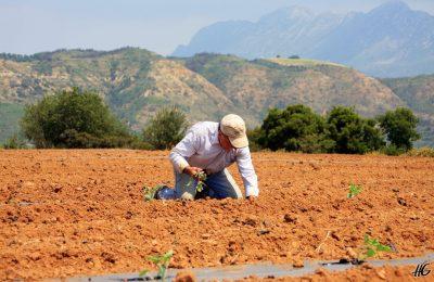 Αγρότης ασφάλιση προαιρετική σχέδια Μηχανογραφικό Παράταση