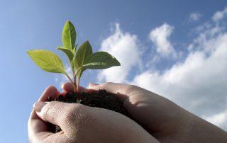Αιτήσεις απόθεμα οριστικοποιήσεις Αναπτυξιακός αγρότισσες Εξοπλισμός