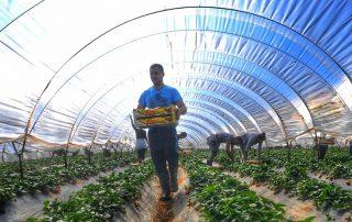 πληρωμή νεοεισερχόμενων αγρότες επαγγελματικό λογαριασμό Πίνακες Βελτίωσης