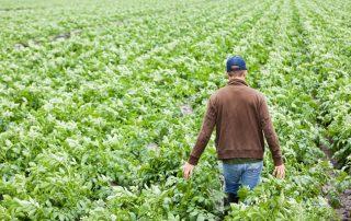 αγροτών
