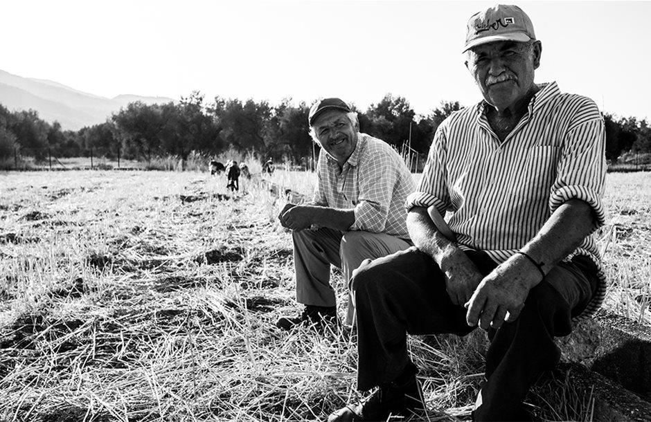 Εκκρεμείς συντάξεις αγροτών