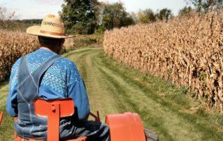 Συντάξεις αγροτών