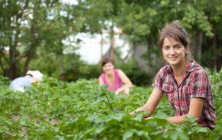 μοριοδότηση αγρότες νέο Ταμείο επικουρικής ασφάλισης