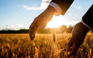 Φορολογικά κίνητρα Αγρότες Συνεταιρισμοί